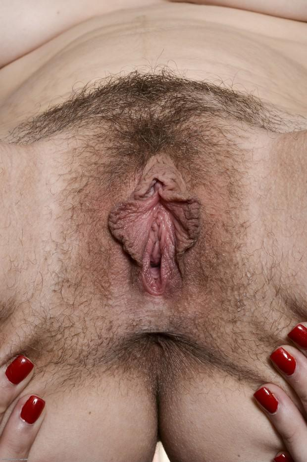 Theme, hairy pussy panties down ass opinion only